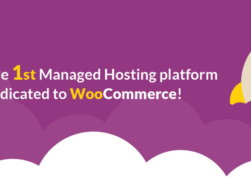 thecore.io the first WooCommerce Management Platform